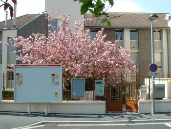 Bibliothèqure municipale de Houilles